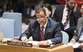 Security Council briefing on the situation in Yemen, Special Envoy of the Secretary-General for Yemen, Ismail Ould Cheikh Ahmed