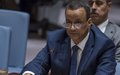 Briefing of the UN Special Envoy for Yemen at the open session of the Security Council